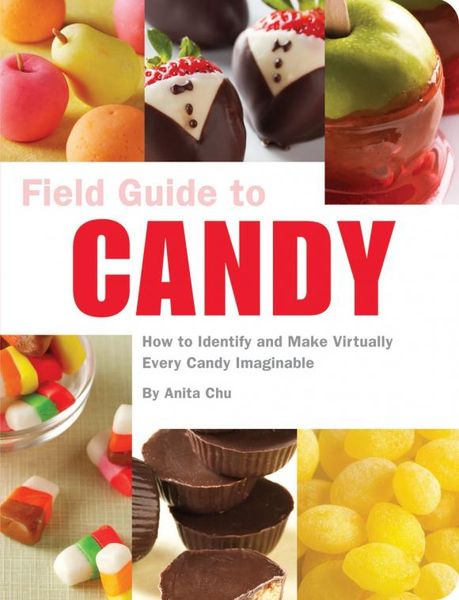 Field Guide to Candy david buckham executive s guide to solvency ii