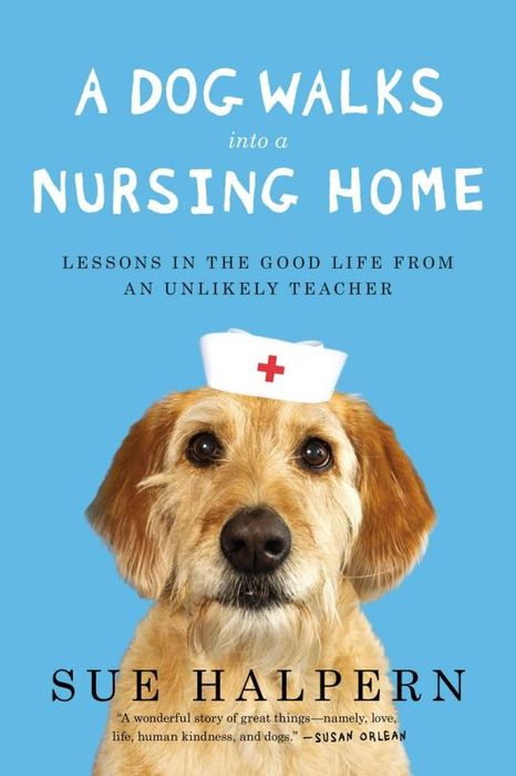 A Dog Walks Into a Nursing Home it8712f a hxs