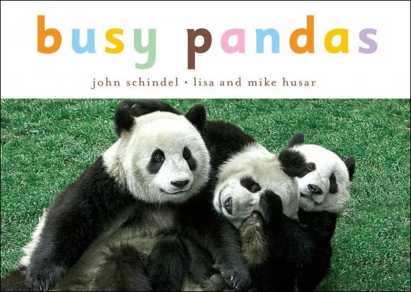 Busy Pandas жидкость pandas apple target 60мл 3 мг
