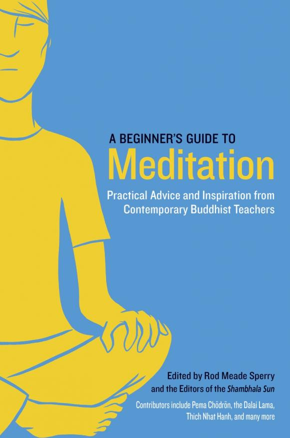 A Beginner's Guide to Meditation david buckham executive s guide to solvency ii