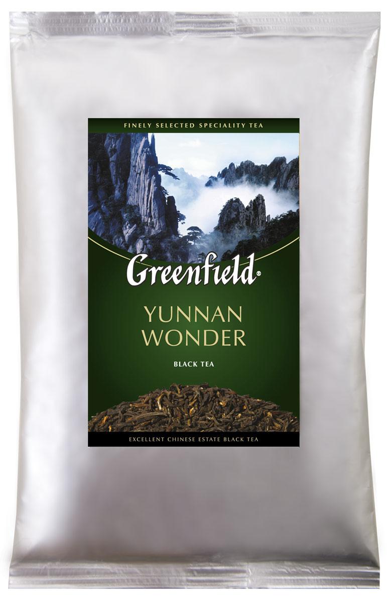 Greenfield Yunnan Wonder черный листовой чай, 250 г0974-15Великолепный вкус чая Greenfield Yunnan Wonder словно переносит к югу от облаков - так в переводе с китайского звучит название провинции Юньнань, где рождается этот чай. Нежный, чуть дымный аромат в букете гармонично сочетается с легким, но хорошо ощутимым оттенком чернослива, присущим дорогим сортам юньнаньского чая.