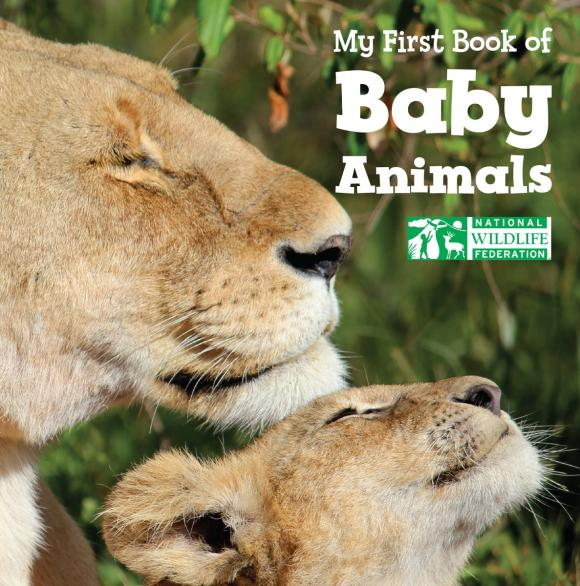 My First Book of Baby Animals (National Wildlife Federation) my very first book of motion