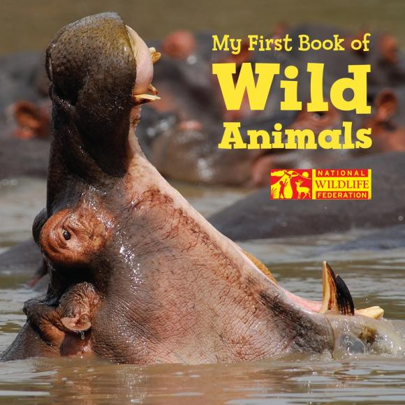 My First Book of Wild Animals (National Wildlife Federation) wild animals activity book level 2