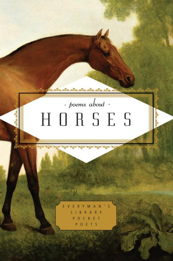 Poems About Horses horses