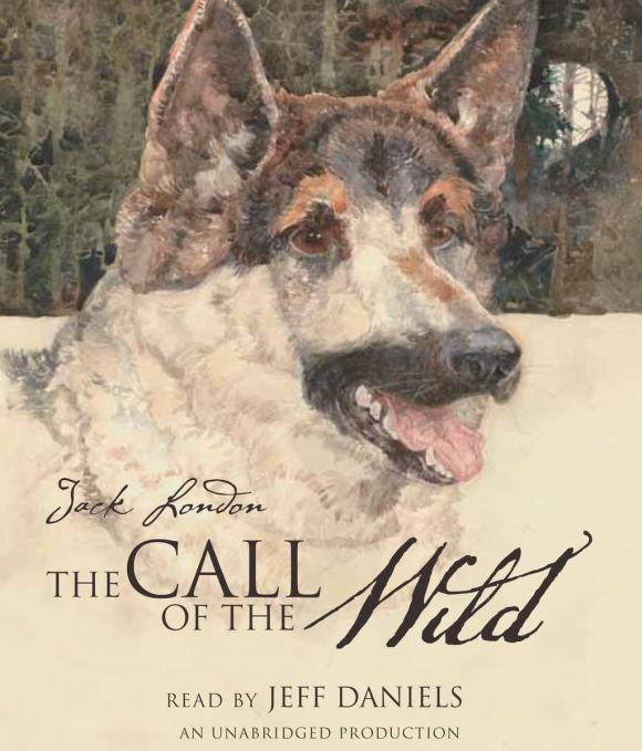 The Call of the Wild london j the call of the wild before adam novels зов предков до адама повести