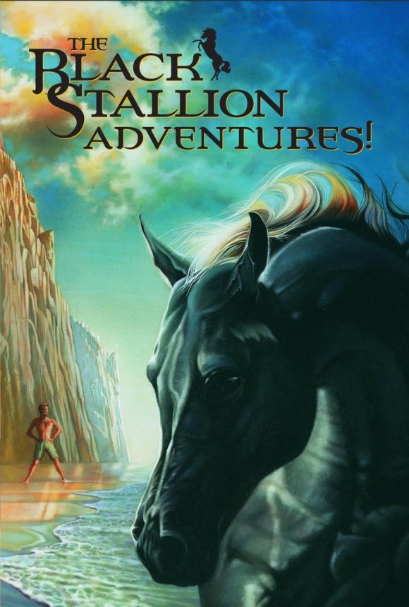 Black Stallion Adventure Set stallion