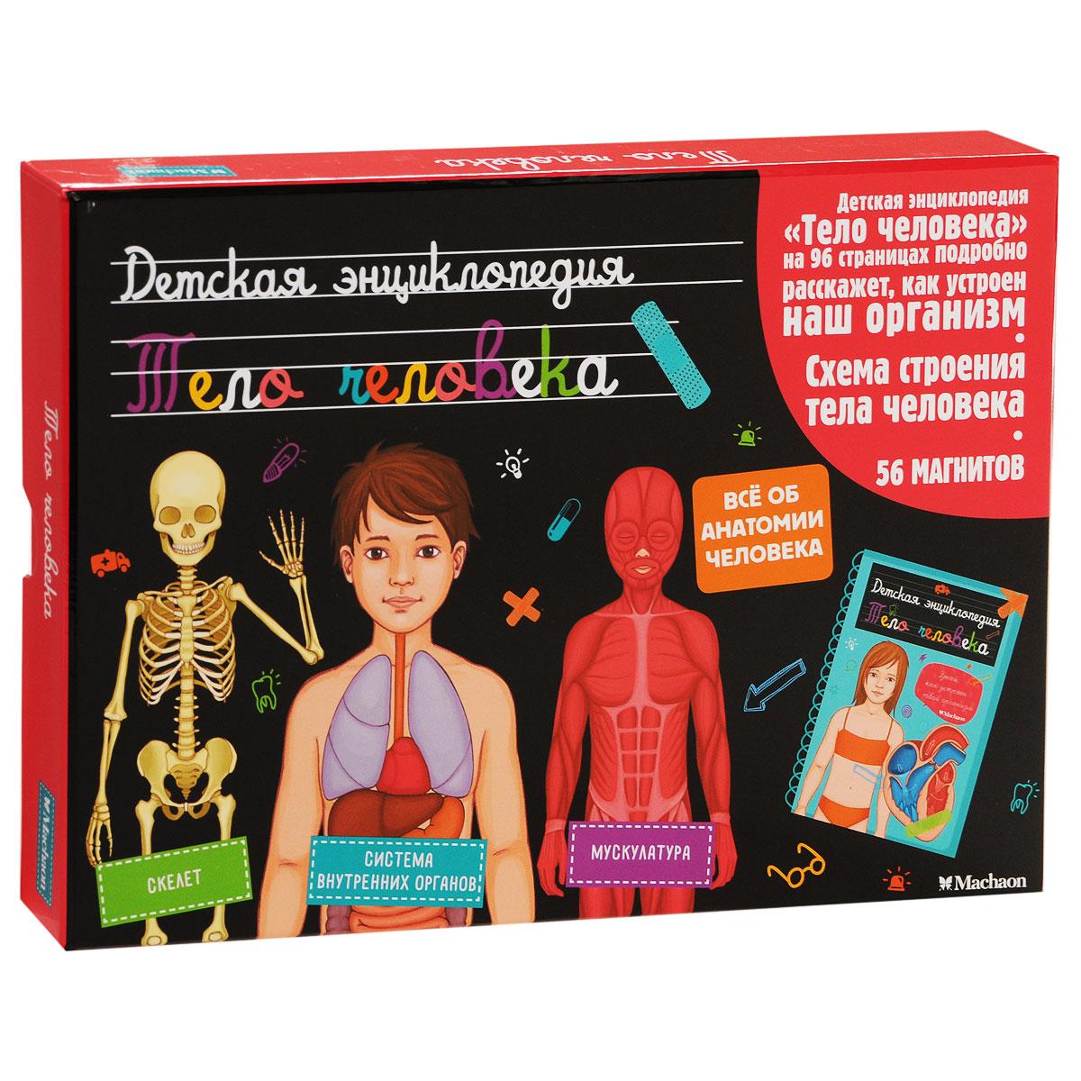 Тело человека. Детская энциклопедия (+ 56 магнитов и схема строения тела человека)