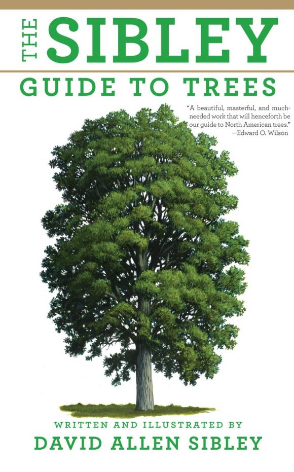 The Sibley Guide to Trees david buckham executive s guide to solvency ii