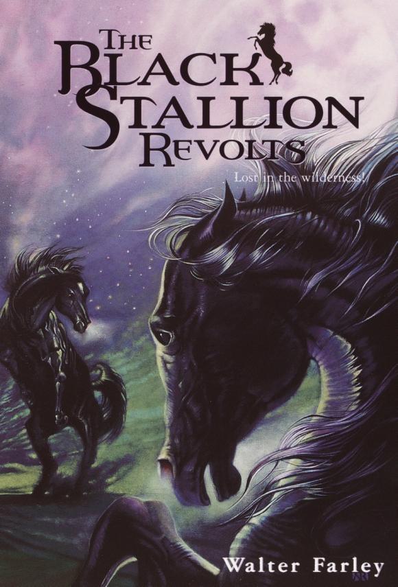 The Black Stallion Revolts stallion