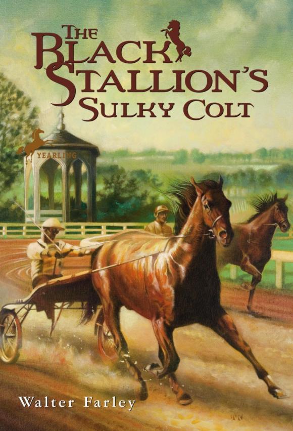 The Black Stallion's Sulky Colt hama syscase 90 colt black