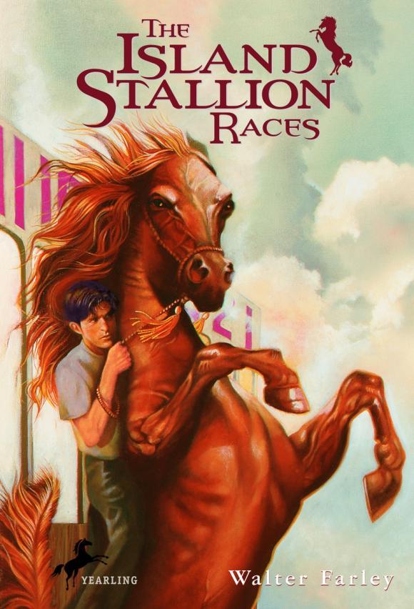 The Island Stallion Races stallion
