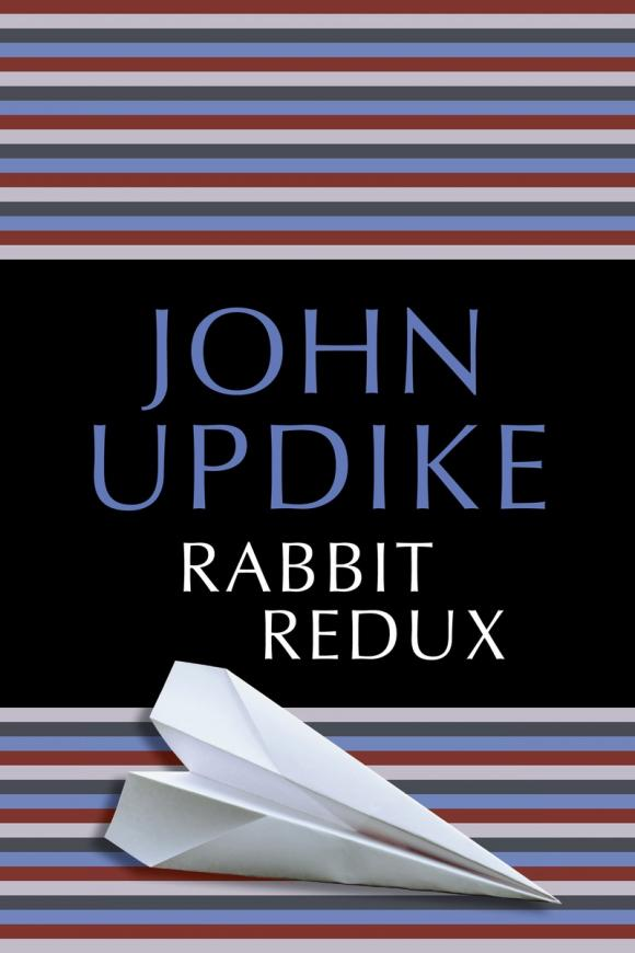 Rabbit Redux edited by john eekelaar and thandabantu nhlapo the changing family
