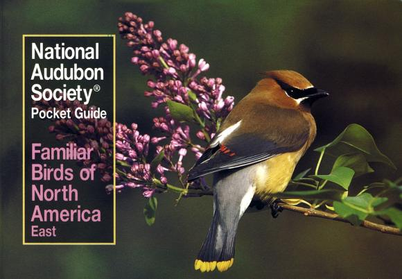 National Audubon Society Pocket Guide to Familiar Birds: Eastern Region pocket photo guide to the birds of china