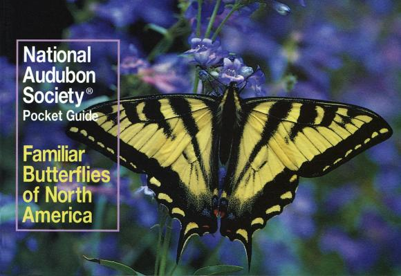 National Audubon Society Pocket Guide to Familiar Butterflies Of North America national geographic pocket guide to the night sky of north america
