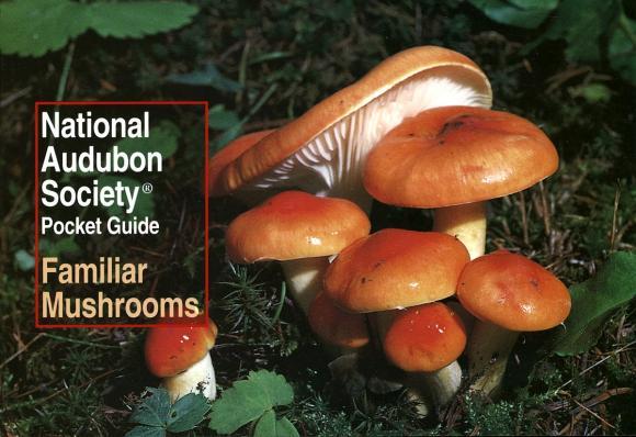 National Audubon Society Pocket Guide to Familiar Mushrooms