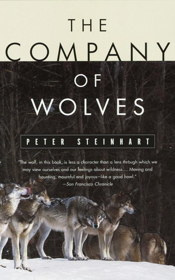 The Company of Wolves wolves