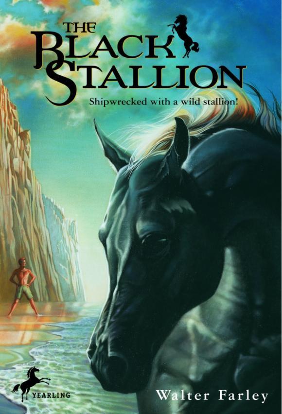 The Black Stallion stallion