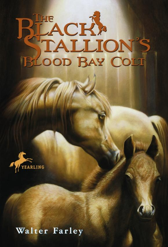 The Black Stallion's Blood Bay Colt hama syscase 90 colt black