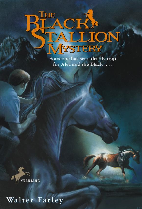 The Black Stallion Mystery stallion