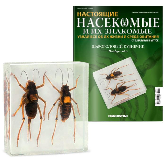 Журнал Насекомые и их знакомые. Специальный выпуск №3 журнал насекомые и их знакомые 57