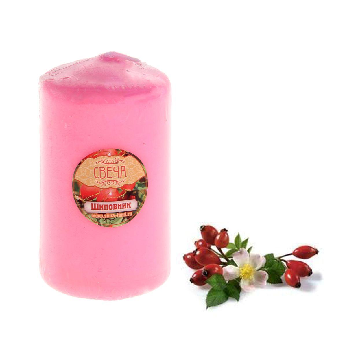 Свеча ароматизированная Sima-land Шиповник, цвет: розовый, высота 10 см. 849611849611Свеча Sima-land Шиповник выполнена из воска в виде столбика. Изделие порадует вас ярким дизайном и освежающим ароматом шиповника, который понравится как женщинам, так и мужчинам. Создайте для себя и своих близких незабываемую атмосферу праздника в доме. Ароматическая свеча Sima-land Шиповник может стать не только отличным подарком, но и гарантией хорошего настроения, ведь это красивая вещь из качественного, безопасного для здоровья материала.