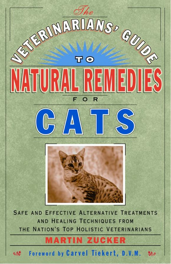 The Veterinarians' Guide to Natural Remedies for Cats persistent rhinitis treatment natural remedies for the treatment