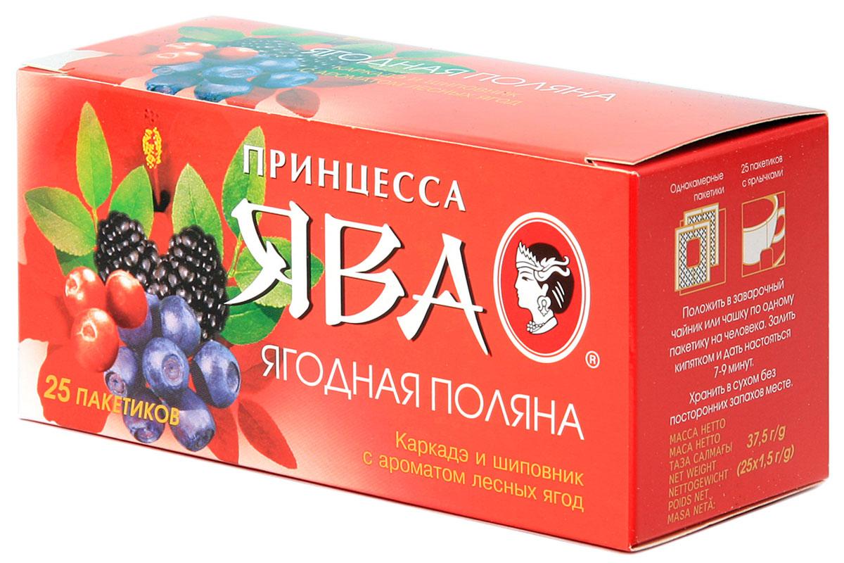Принцесса Ява Ягодная поляна травяной чай в пакетиках, 25 шт0447-42Принцесса Ява Ягодная поляна это травяной чай в пакетиках. Нежные естественные ароматы лесных ягод, мягкий вкус плодов шиповника и свежая кислинка каркадэ создают восхитительный букет этого напитка.