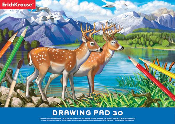 Альбом для рисования Erich Krause, 30 листов, формат А435163Учащиеся техническихучебных заведений по достоинству оценят высокое качество этого альбома для черчения. Бумага плотная и устойчива к истиранию. Листы альбома скреплены клеем, обложка выполнена из мелованного картона. Бумага для черчения может также использоваться для карандашных набросков или для рисования акварелью в технике по сухому. Характеристики:Формат листа: А4. Количество листов: 30. Плотность бумаги: 120 г/м2. Размер альбома: 29,5 см х 21 см.