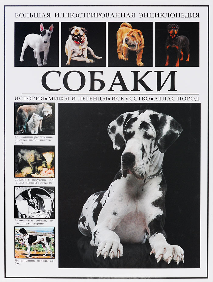 Большая иллюстрированная энциклопедия. Собаки книги эксмо самые популярные породы собак