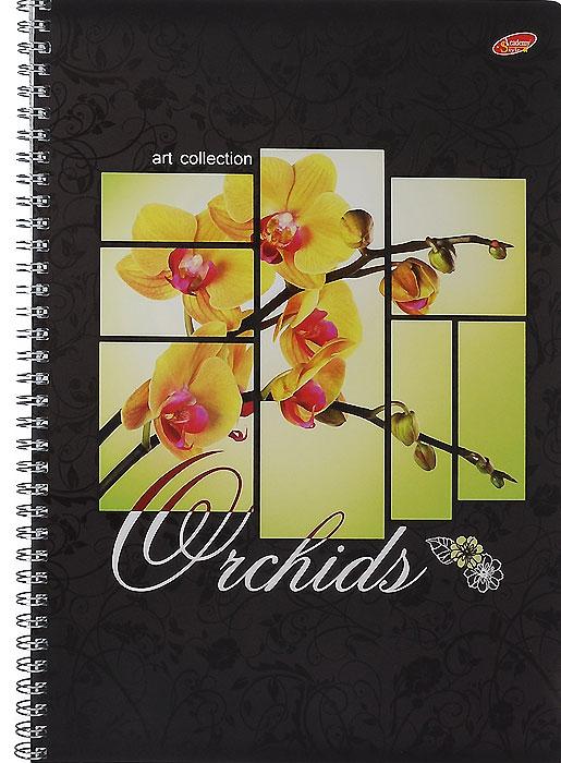 Тетрадь Цветы Орхидеи, 80 листов, формат А4, цвет: черный, желтый7170/2_Цветы ОрхидеиУниверсальная тетрадьЦветы Орхидеи подойдет как для учебы, так и для работы. Обложка тетради выполнена из мелованного картона с глянцевым изображением цветов орхидеи.Внутренний блок состоит из 80 листов белой офсетной бумаги на гребне со стандартной линовкой в клетку без полей.