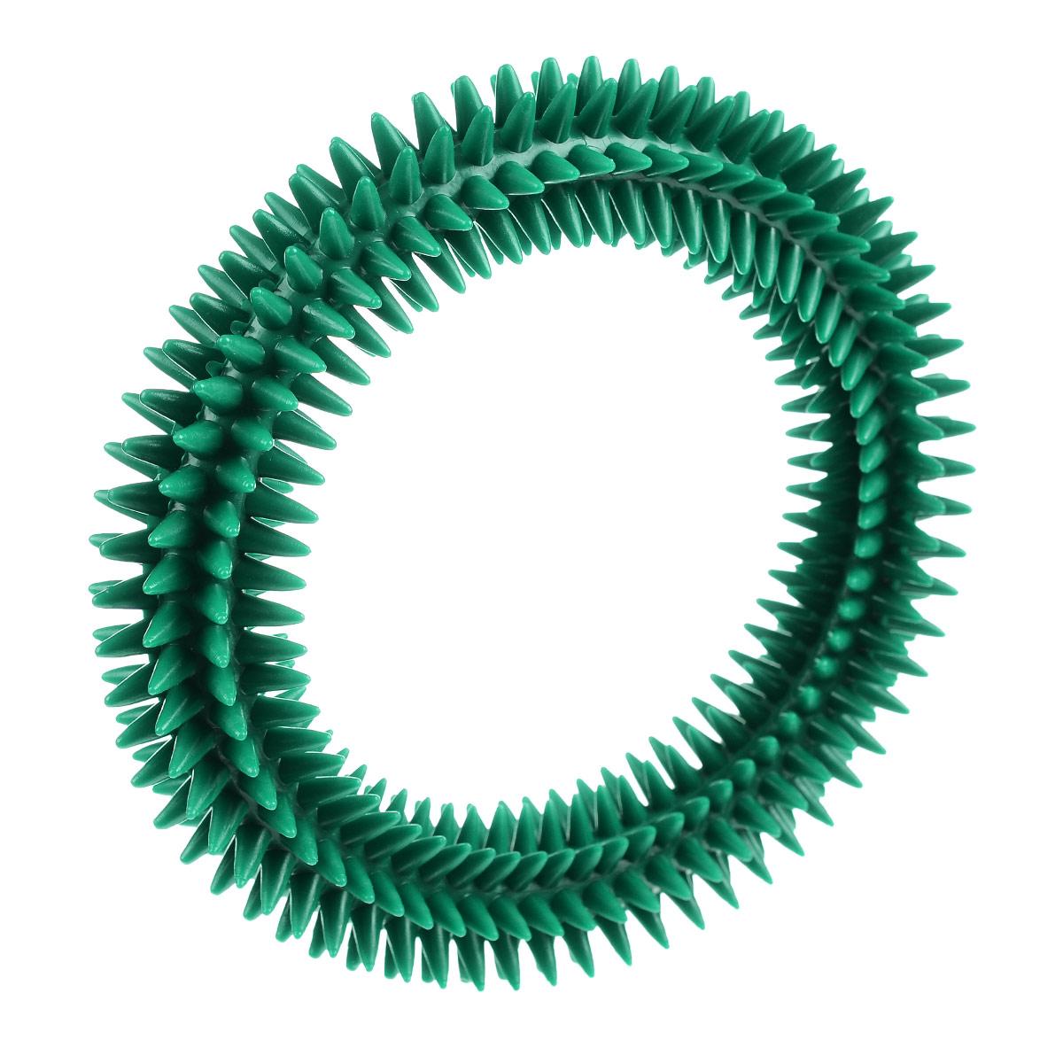 Кольцо массажное с шипами V.I.Pet, цвет: зеленый, диаметр 16 см05016Массажное кольцо с шипами V.I.Pet предназначено для собак. Прочная игрушка выполнена из пластика с использованием только безопасных, не токсичных красителей. Отлично подходит для игры с собакой, во время которой будет происходить массаж и укрепление десен вашего питомца. Как и в случае с любой другой игрушкой для животных, присматривайте за собакой во время игры. Диаметр: 16 см.Товар сертифицирован.