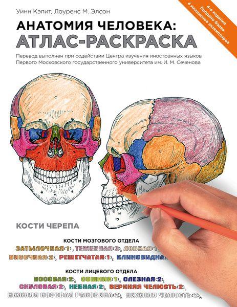 Уинн Кэпит, Лоуренс М. Элсон Анатомия человека. Атлас-раскраска уинн кэпит анатомия человека атлас раскраска