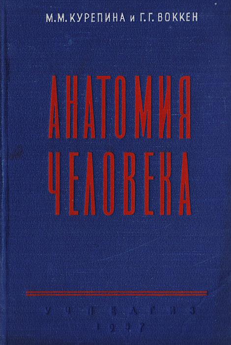 Анатомия человека. Учебник для педагогических институтов