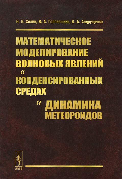 9785971025054 - Н. Н. Холин, В. А. Головешкин, В. А. Андрущенко: Математическое моделирование волновых явлений в конденсированных средах и динамика метеороидов - Книга