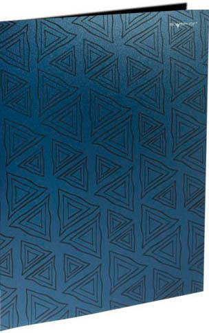 Папка с двумя боковыми карманами, р=0.4мм, DELTA, синяя арт.255024-21 ед.изм.Шт255024-21Серия: DELTA