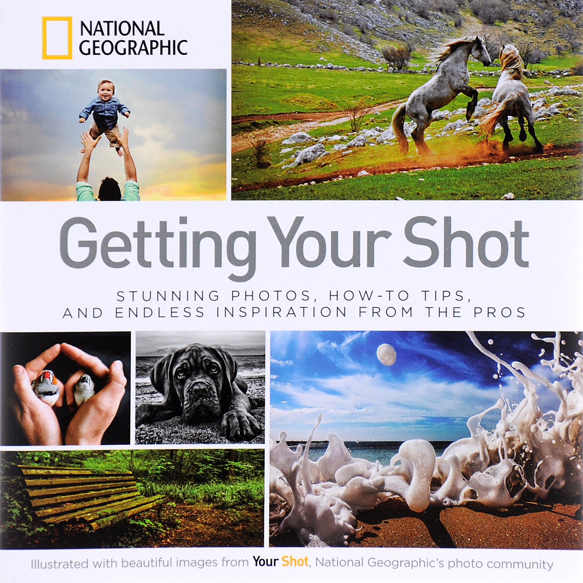 Getting Your Shot: Stunning Photos, How-to Tips, and Endless Inspiration From the Pros jim hornickel negotiating success tips and tools for building rapport and dissolving conflict while still getting what you want