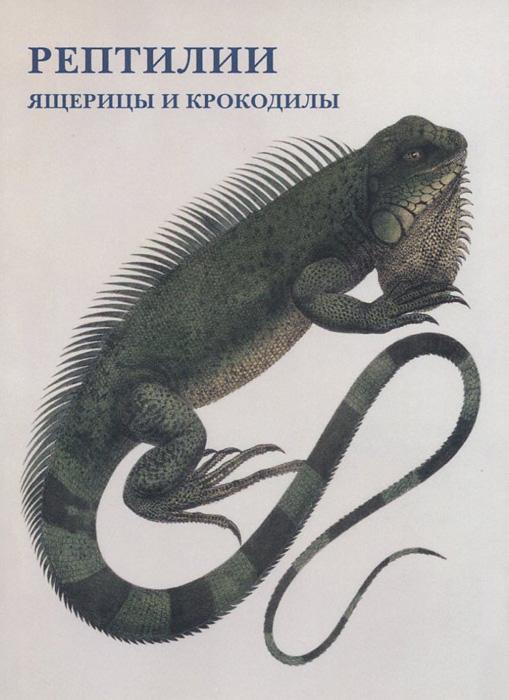 Рептилии. Ящерицы и крокодилы (набор из 15 открыток) рыбы набор из 15 открыток