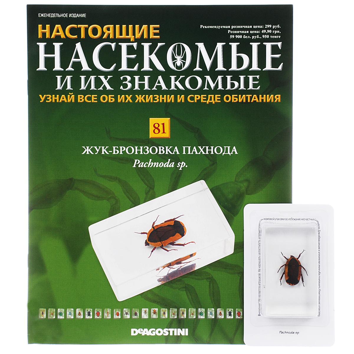 Журнал Насекомые и их знакомые №81 журнал насекомые и их знакомые 57