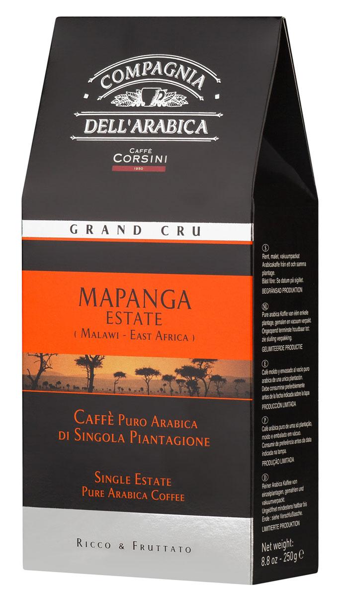 Compagnia DellArabica Grand Cru Mapanga молотый кофе, 250 г (вакуумная упаковка)8001684013326Compagnia DellArabica Grand Cru Mapanga - бережно выращенный в Восточной Африке, редкий и совершенно особенный сорт. Для его производства используют отборные и самые крупные зерна 100% арабики, носящие маркировку ААA. В результате получается нежный и богатый вкус кофе со слегка кисловатым, винным привкусом. Чтобы насладиться неповторимым вкусом молотого кофе от Compagnia DellArabica, вы можете приготовить его любым известным вам способом, даже просто залив кипятком в чашке!