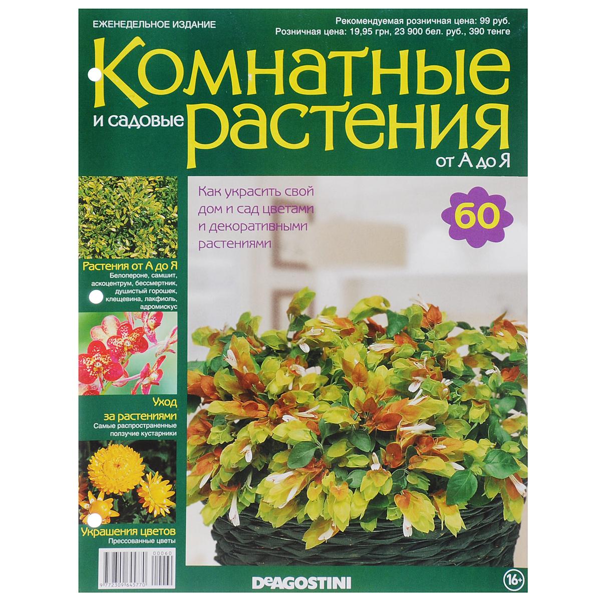 Журнал Комнатные и садовые растения. От А до Я №60 математика для дошкольников от а до я