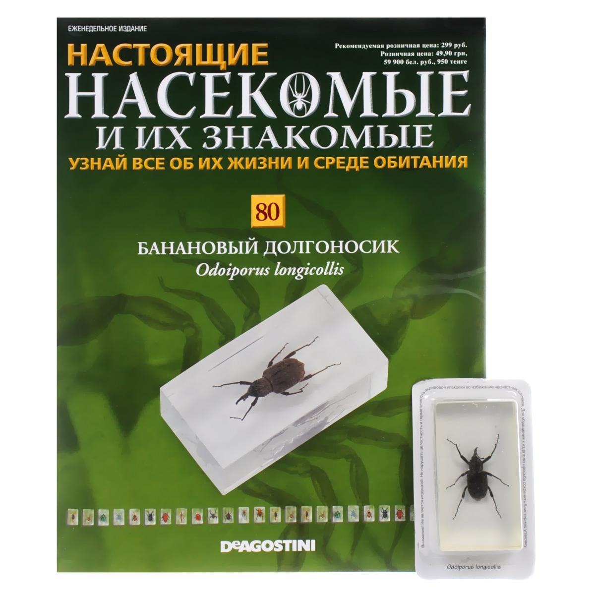 Журнал Насекомые и их знакомые №80 журнал насекомые и их знакомые 57