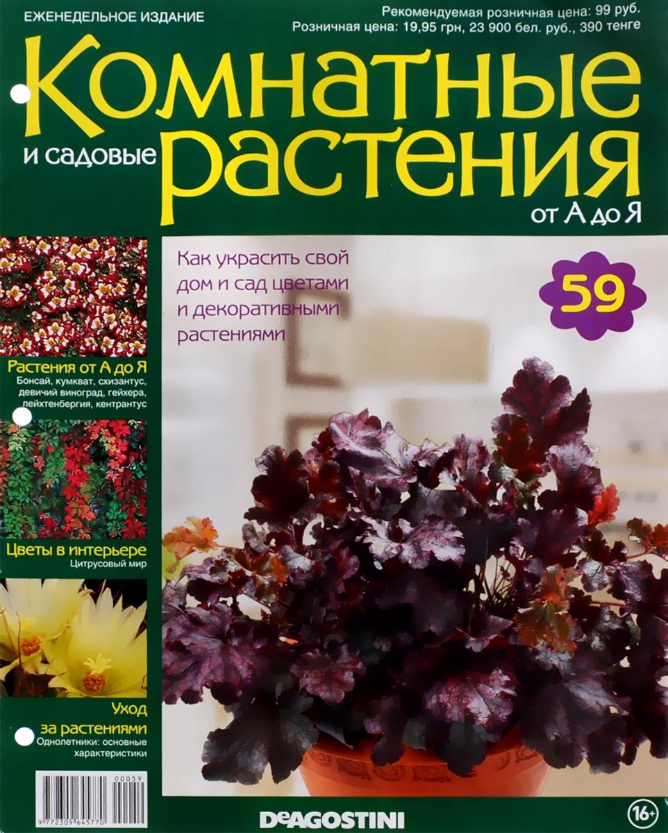 Журнал Комнатные и садовые растения. От А до Я №59 математика для дошкольников от а до я