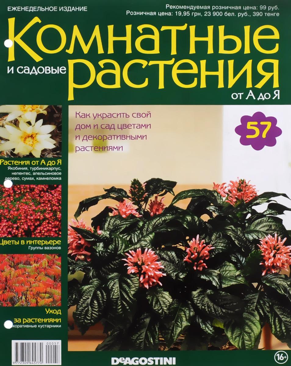 Журнал Комнатные и садовые растения. От А до Я №57 математика для дошкольников от а до я