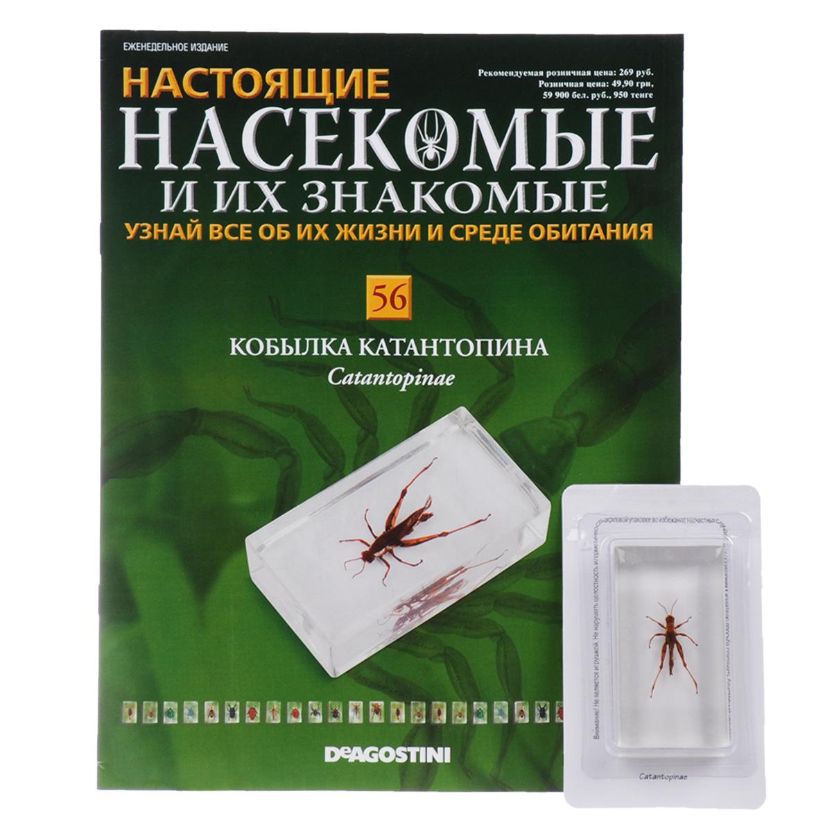 Журнал Насекомые и их знакомые №56 журнал насекомые и их знакомые 57