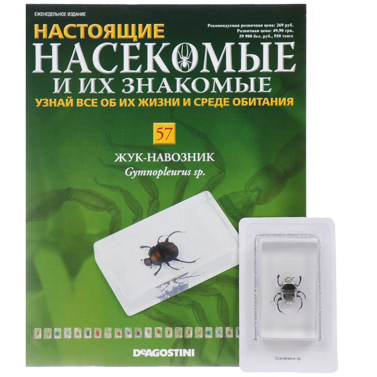 Журнал Насекомые и их знакомые №57 журнал насекомые и их знакомые 57