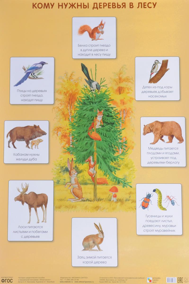 С. Н. Николаева Кому нужны деревья в лесу. Плакат кому нужны твои мечты
