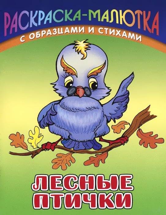 Сергей Кузьмин Лесные птички