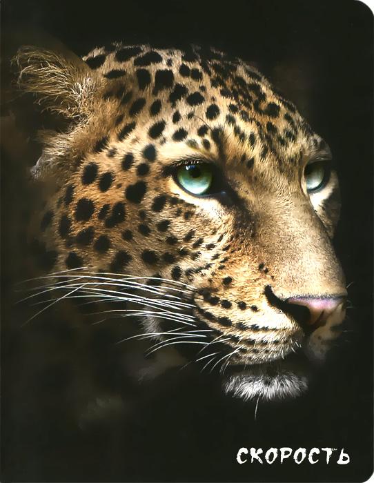 Блокнот настоящего хищника (Гепард) интернет магазин гепард