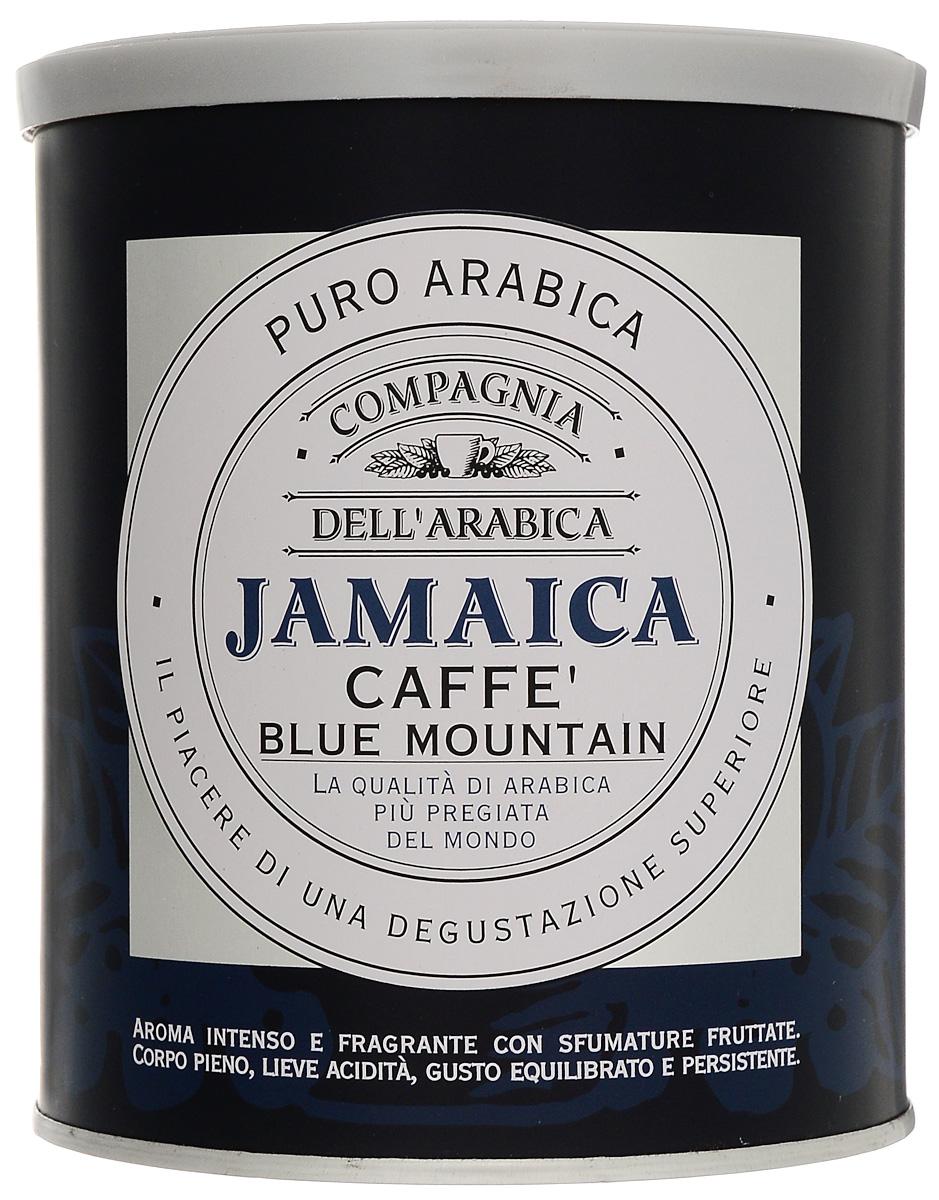 Compagnia DellArabica Jamaica Blue Mountain молотый кофе, 250 г (жестяная банка)8001684025626Compagnia DellArabica Jamaica Blue Mountain заслуженно считается наиболее элитным из всех существующих сортов кофе. Жемчужина кофейной коллекции Compagnia DellArabica! Содержит в себе нотки Карибского рома, аромат драгоценной ванили, полутона миндаля и какао, а также деликатный намек на бархатный аромат дорого табака. Чтобы насладиться неповторимым вкусом молотого кофе от Compagnia DellArabica, вы можете приготовить его любым известным вам способом, даже просто залив кипятком в чашке!Кофе: мифы и факты. Статья OZON Гид