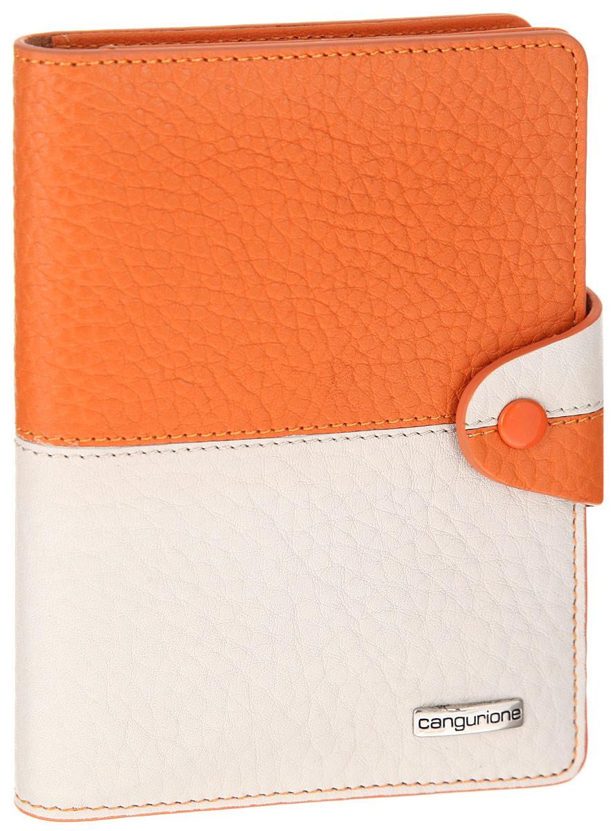 Обложка для автодокументов Cangurione, цвет: оранжевый, бежевый. 3341-FНатуральная кожаСтильная обложка для автодокументов Cangurione оригинальной расцветки выполнена из натуральной высококачественной кожи и декорирована фактурным тиснением и прострочкой по контуру. Лицевая сторона обложки оформлена металлической пластиной с названием бренда. Закрывается изделие на хлястик с кнопкой. На внутреннем развороте четыре прорези для визиток и кредитных карт, съемный блок из пяти прозрачных файлов из мягкого пластика, сетчатый карман для фото и дополнительный вертикальный карман.Изделие упаковано в стильную фирменную коробку.Обложка не только поможет сохранить внешний вид ваших документов и защитить их от повреждений, но и станет стильным аксессуаром, который подчеркнет ваш неповторимый стиль.